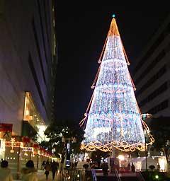 浜松駅前のイベントツリー